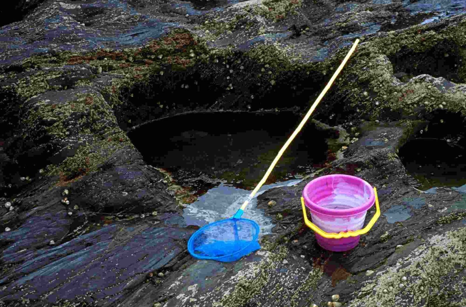 rockpool with kids outdoor activities for kids
